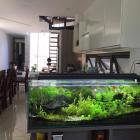 Cho thuê nhà đẹp 2 tầng khu biển  Mỹ Khê, diện tích đất 150m2, 3 phòng ngủ, giá 35 triệu