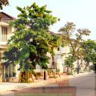 Cho thuê biệt thự Euro Village Làng Châu Âu - DN453