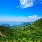 Cho thuê đất vườn rừng Nam đèo Hải Vân - Quốc Lộ 1A, tổng diện tích 15 ha