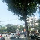 Cho thuê nhanh nhà MT Trần Phú, Hải Châu, ĐN – giá chỉ 46tr/tháng