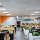 Văn phòng đường Nguyễn Hữu Thọ_cổng ra vào Sân Bay