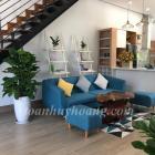 Cho thuê villa sân vườn khu Hòa Xuân 3 phòng ngủ khép kín giá 25 triệu-TOÀN HUY HOÀNG