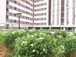 Căn hộ City Tower Bình Dương, chỉ 300 triệu nhận nhà