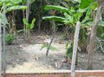 Bán đất đường Nguyễn Chí Thanh vào 3 sẹc