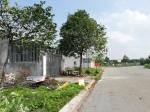 Bán đất tại đường 70, KDC Phú Chánh, Phú Tân, Thủ Dầu Một, Bình Dương, DT 189m2, giá 9 triệu/m2